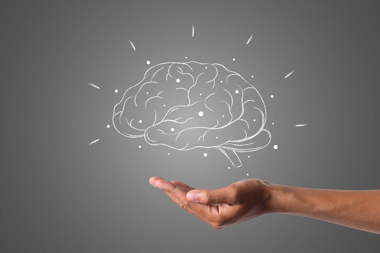 brain, hand, grey