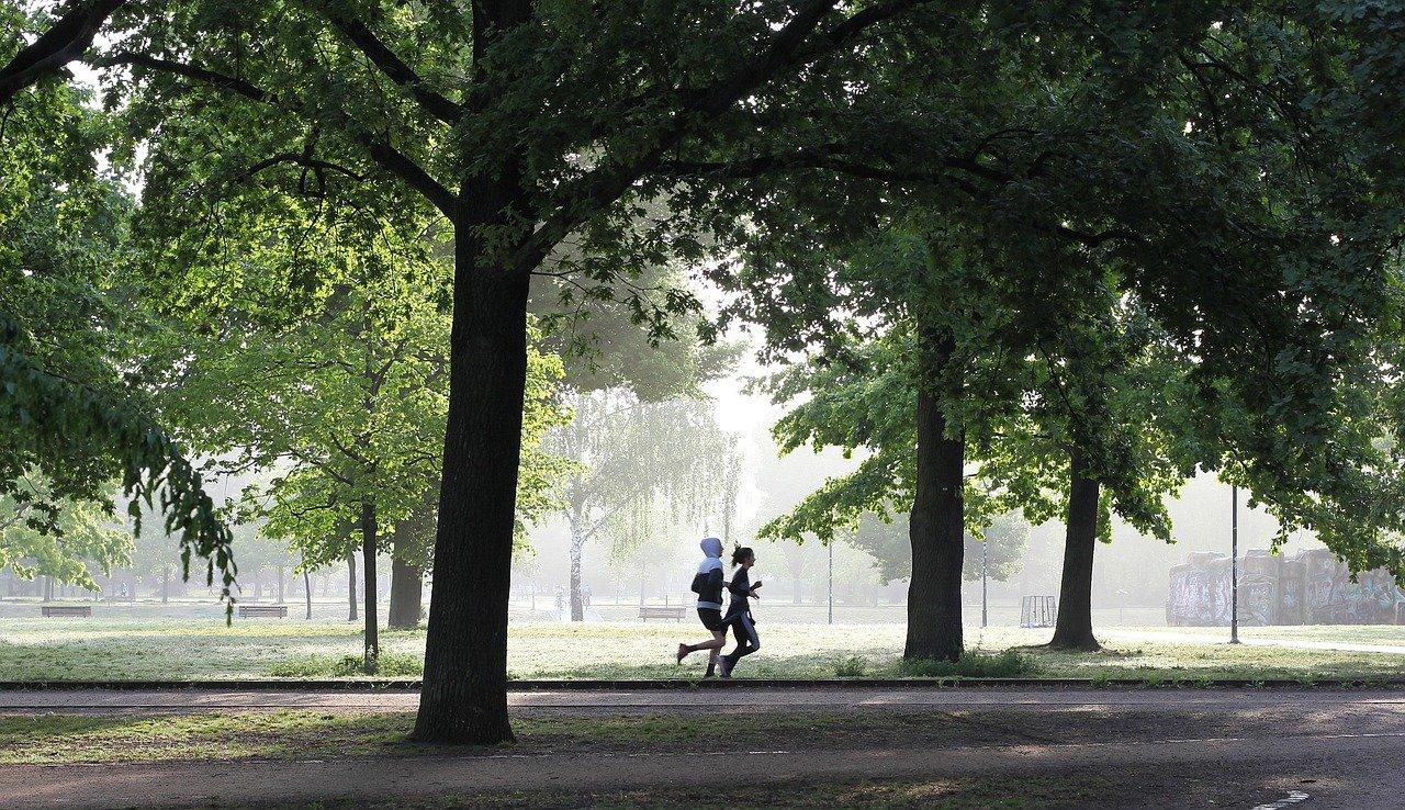 jogging, fitness, jogger